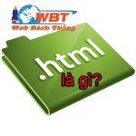 HTML là gì? khái niệm HTML và mối liên quan đến website