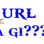 URL là gì? Những điều thú vị bạn có thể chưa biết về URL