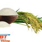 Thiết kế website bán gạo đẹp chất lượng cao giá tốt