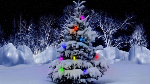 tìm hiểu ý nghĩa ngày lễ giáng sinh