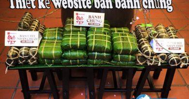 Thiết kế website bán bánh chưng