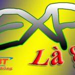 EXP là gì? Tổng hợp những ý nghĩa đúng nhất về EXP