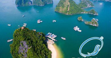 Tour Du Lich Hạ Long Tuần Châu 2 Ngày 1 Đêm