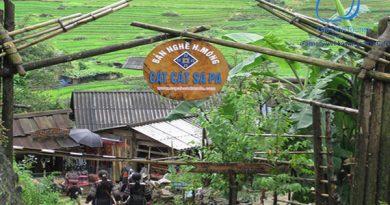 Tour Du Lịch Sapa 2 Ngày 3 Đêm Sa Pa Hàm Rồng Lào Cai