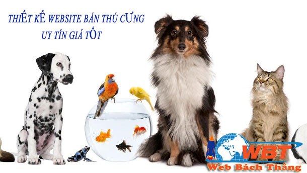 Thiết kế website bán thú cưng uy tín giá tốt