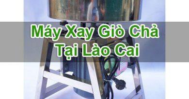 Máy Xay Giò Chả Tại Lào Cai
