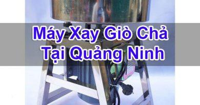 Máy Xay Giò Chả Tại Quảng Ninh