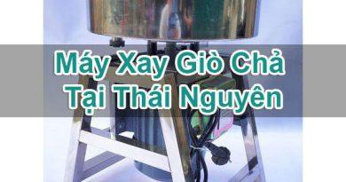 Máy Xay Giò Chả Tại Thái Nguyên