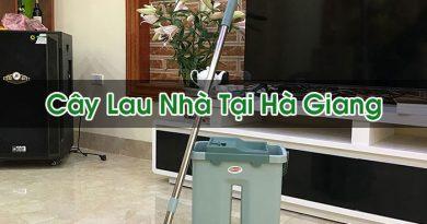 Cây Lau Nhà Tại Hà Giang