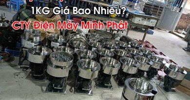 Máy Xay Giò Chả 1KG Giá Bao Nhiêu