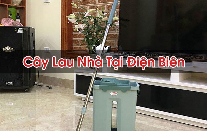 Cây Lau Nhà Tại Điện Biên